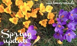 spring pic